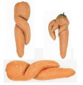 Defective carrots: Carote imperfette